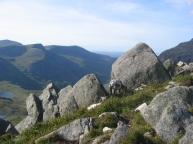 Mountain goats on Tryfan