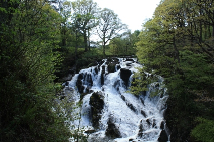The Swallow Falls is also known as Rhaeadr Ewynnol (The Foaming Waterfall)