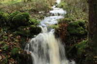 Waterfalls on the way to the Fairy Glen