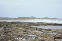 Bamburgh Castle rears over the sand dunes