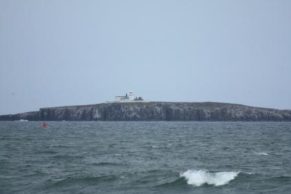 Farne Island