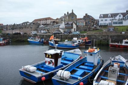 Beautiful, bright boats