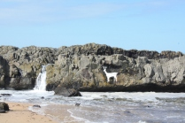 This part of the beach is known as Stag Rock, though no one knows why