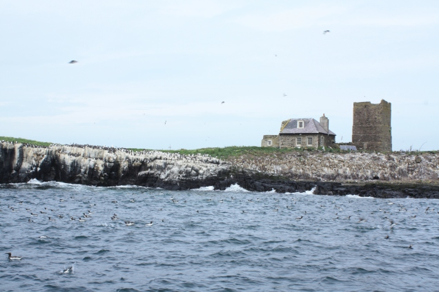 Brownsman Cottage, next to it is an old paraffin lighthouse
