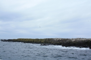 Harcar Rock where Grace Darling and her father preformed their fearless rescue